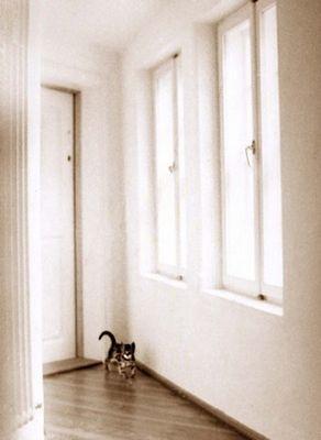 Bernd in da hall