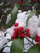 berries in a blanket.