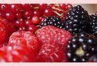 Berry II