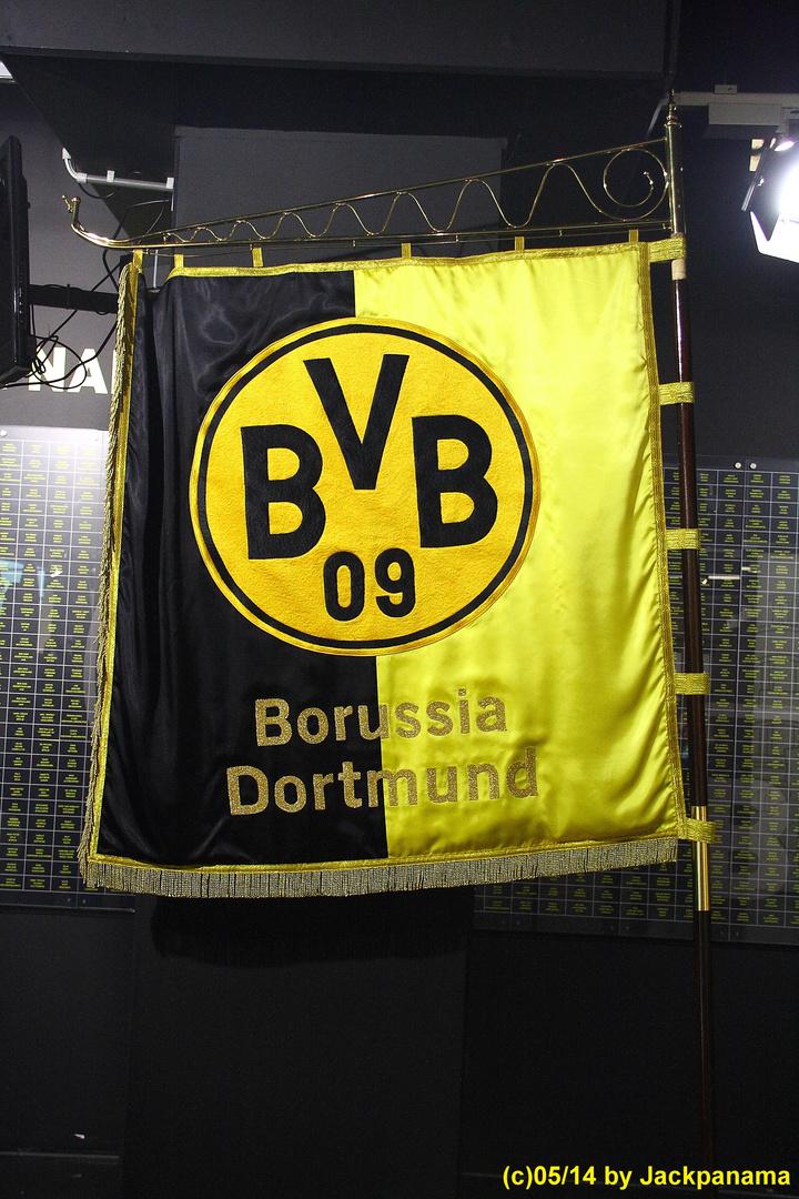 Besichtigung des Signal-Iduna-Parks des BV Dorussia Dortmund 1909 mit der VHS (14)