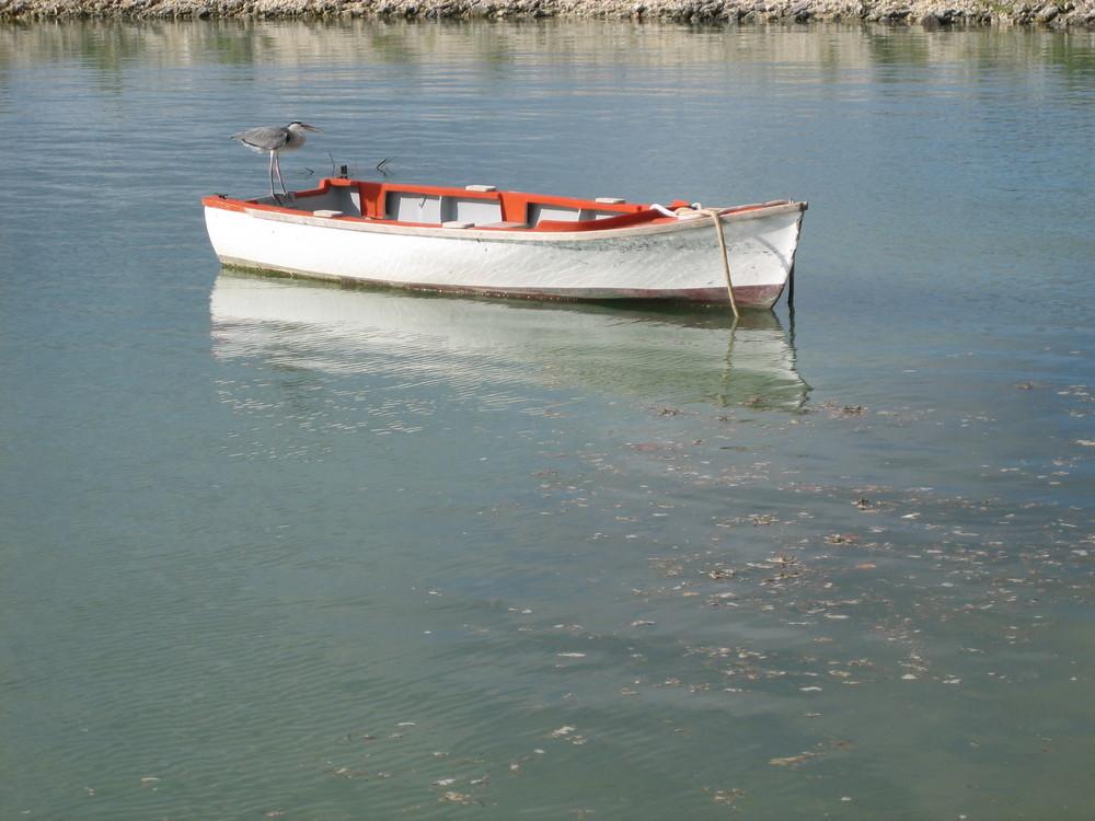 Besitzer des Bootes?