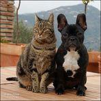 *best friends*
