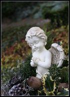 --- Besuch auf dem Friedhof ---