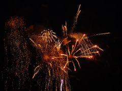 Besuch der Feuerwerkssinfonie 2