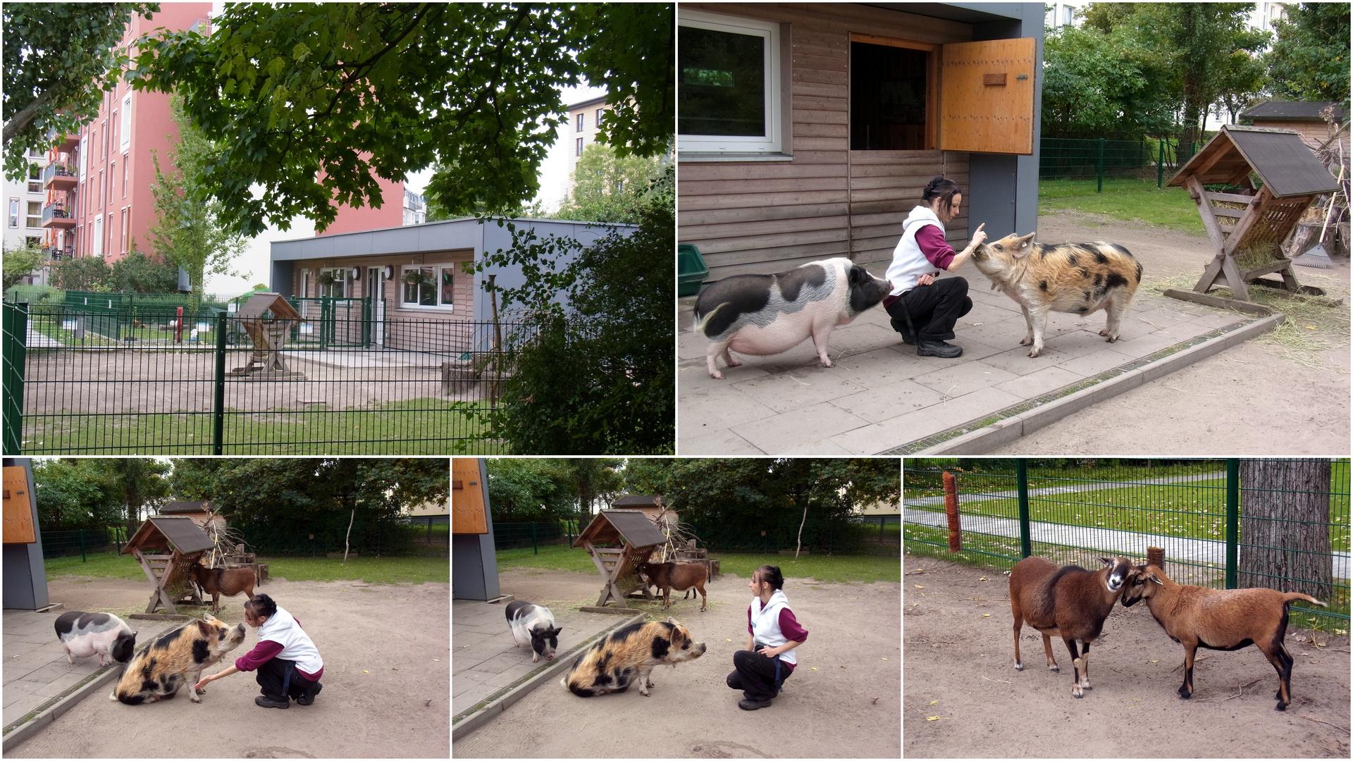 Besuch im Tierhaus