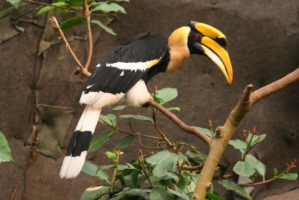 Besuch im Zoo 3
