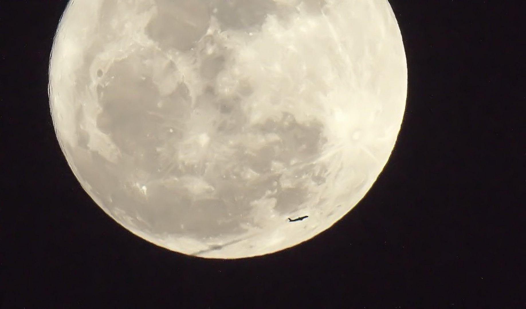 Besucher für den Mann im Mond ;O)