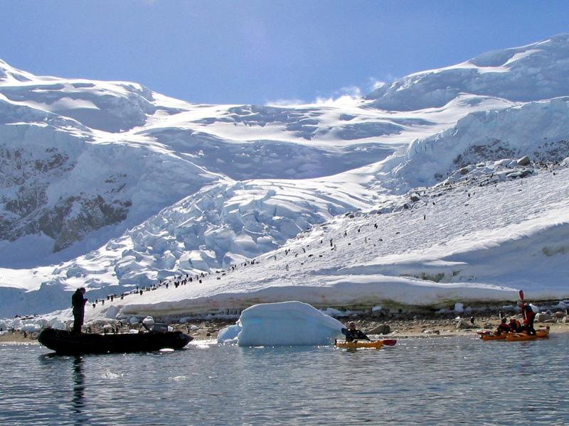 Besucher im ewigen Eis