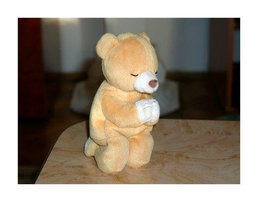Betender Teddy