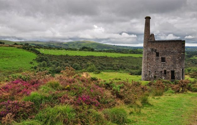 Betsy Wheal, Dartmoor