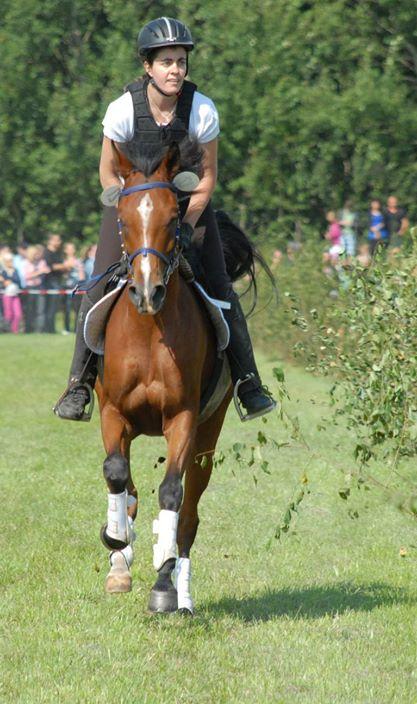 Beverstedter Pferderennen 2013