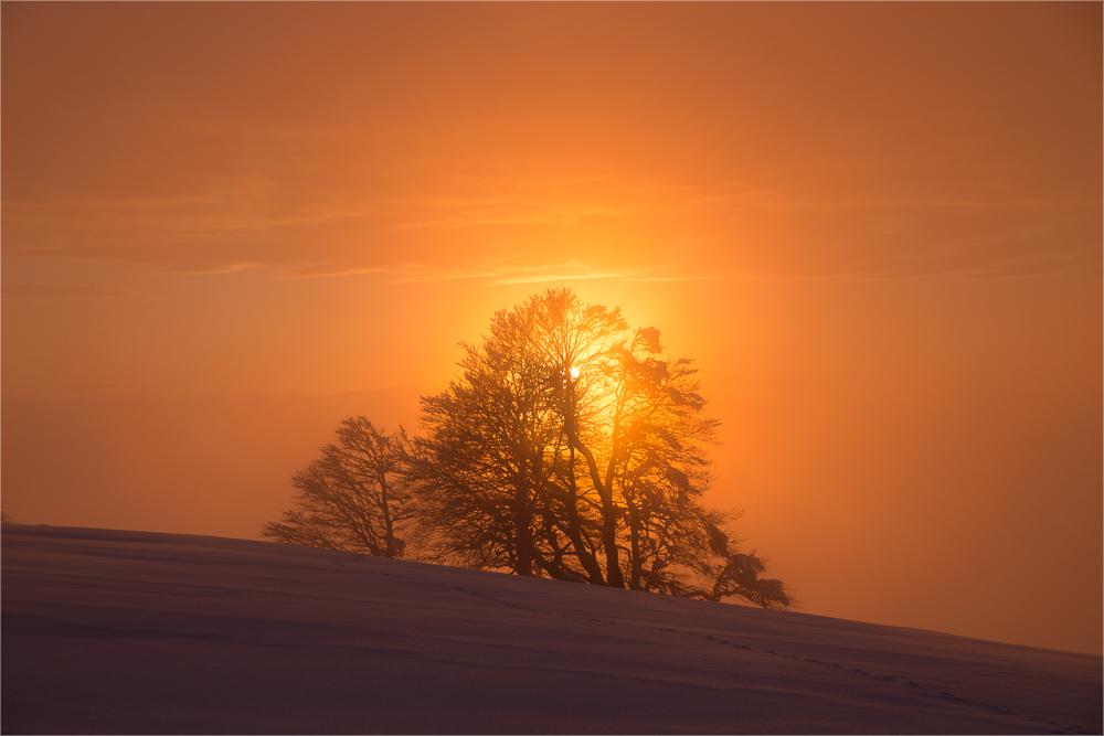 bevor die Sonne verschwindet...
