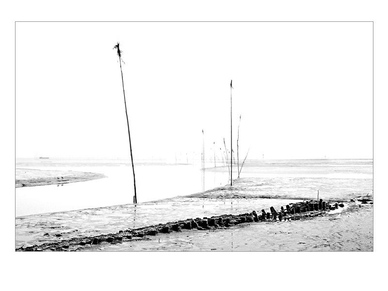 - beyond the sea - by Esti Cs.
