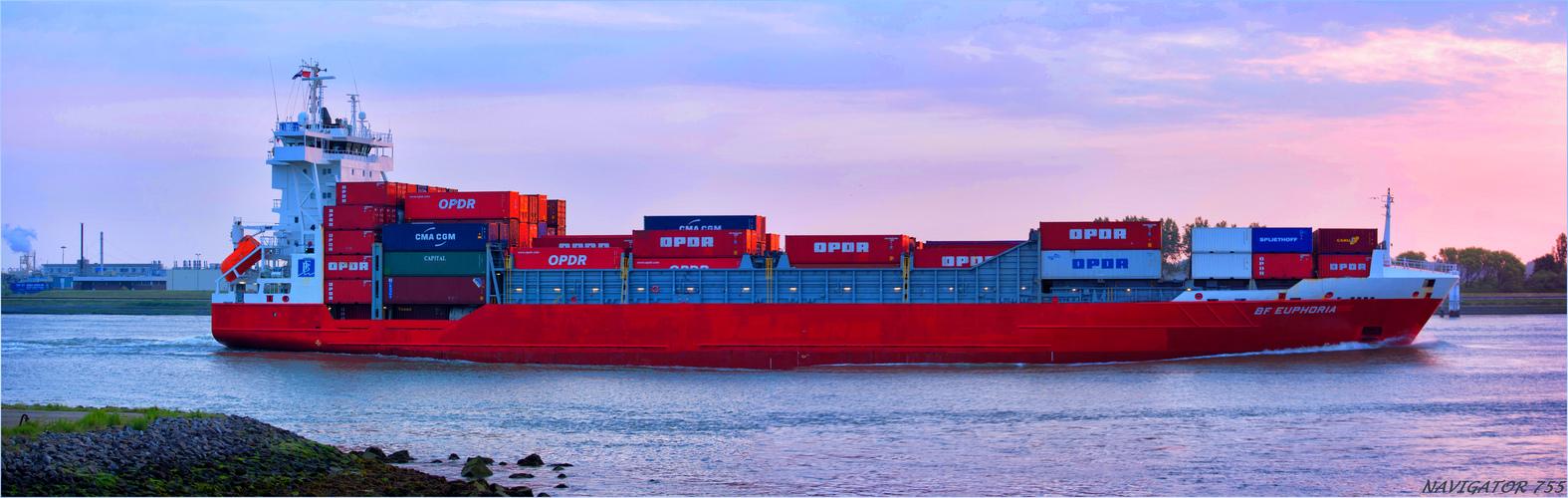 BF EUPHORIA / Cntainer Ship / Nieuwe Waterweg / Rotterdam