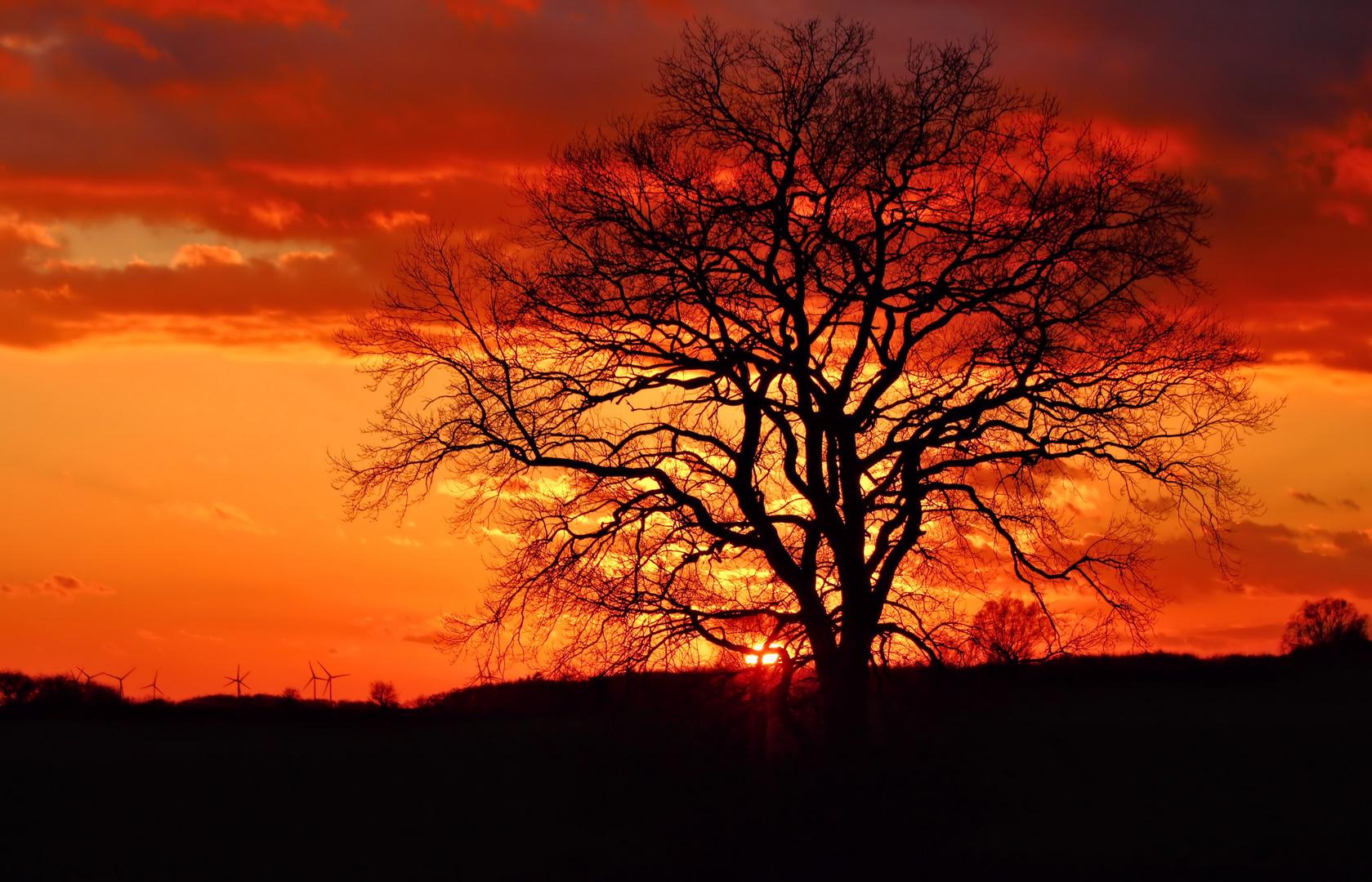 Bi uns tu hus - Sonnenuntergang heute (2)