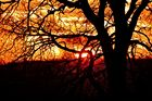 Bi uns tu hus - Sonnenuntergang heute (3)