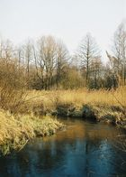 Biala Przemsza River