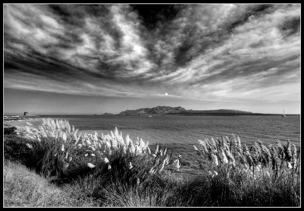Bianco e nero foto immagini paesaggi mare natura foto for Disegni bianco e nero paesaggi