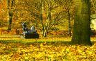 Bibelpark in Viborg(DK)