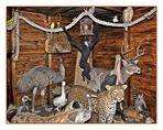 Biblischer Tierschutz