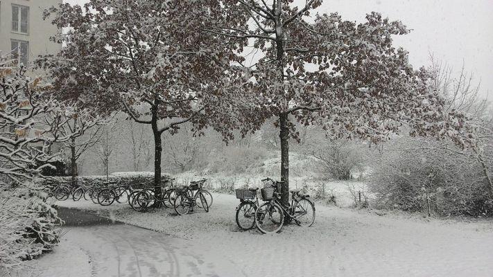 bici imbiancate