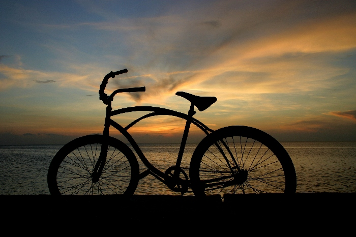 bici sognante