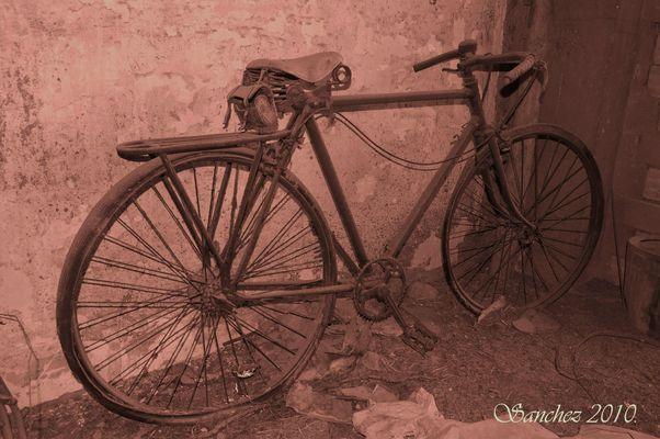 Bicicleta en el olvido.