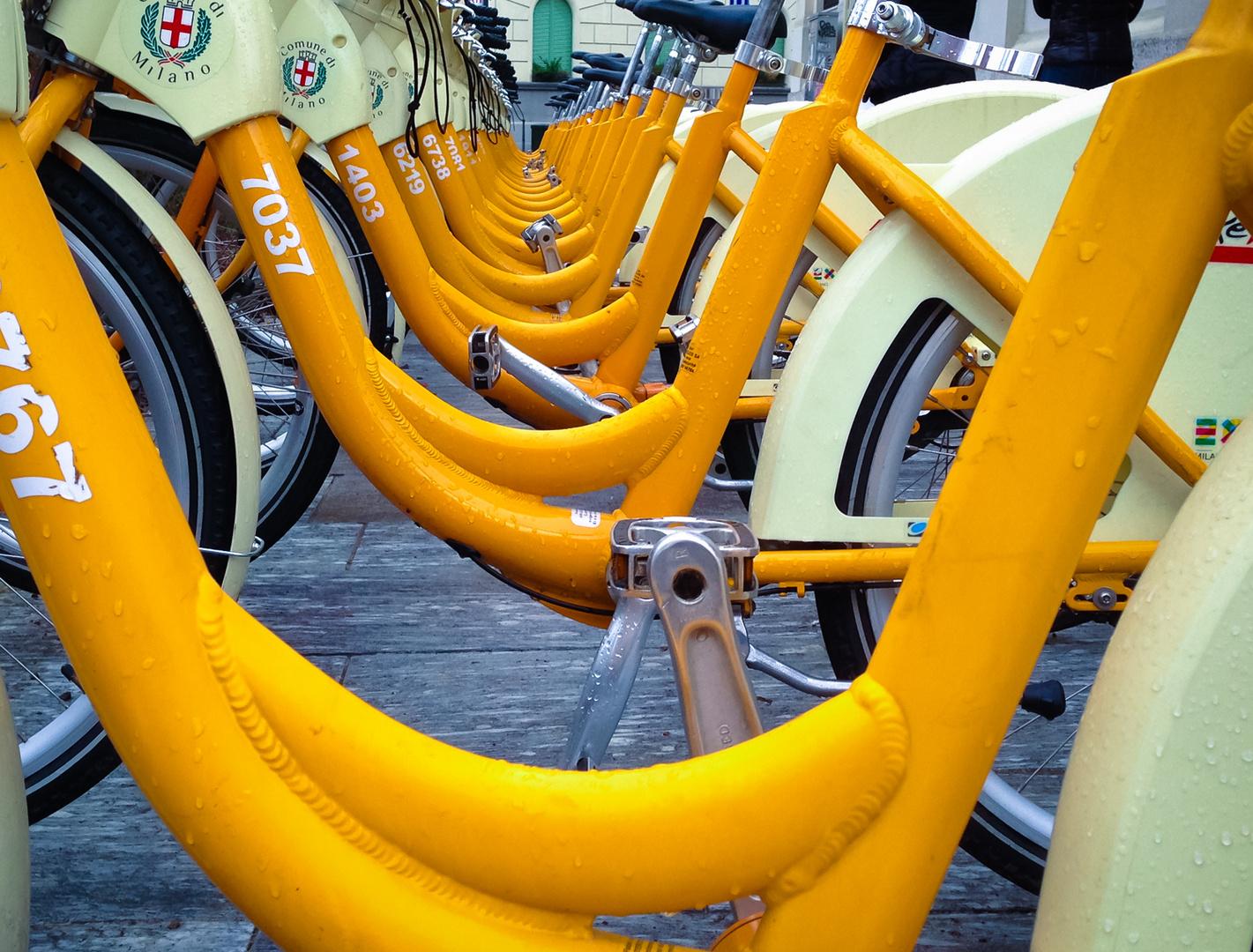 .:: bicicletta ::.
