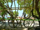 bicycle in bali