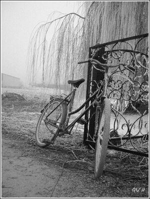 bicyclette givrée