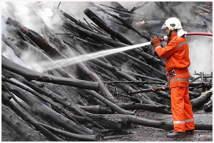 Biedermann und die Brandstiftung