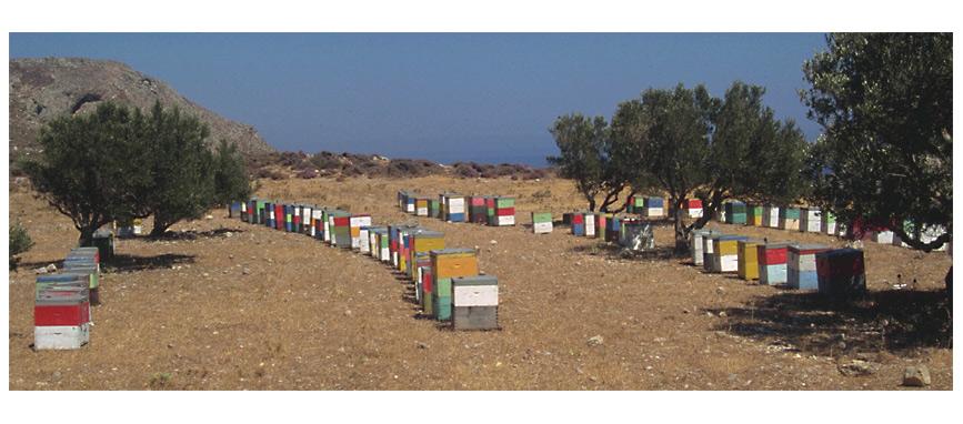 Bienenstöcke (Kreta)