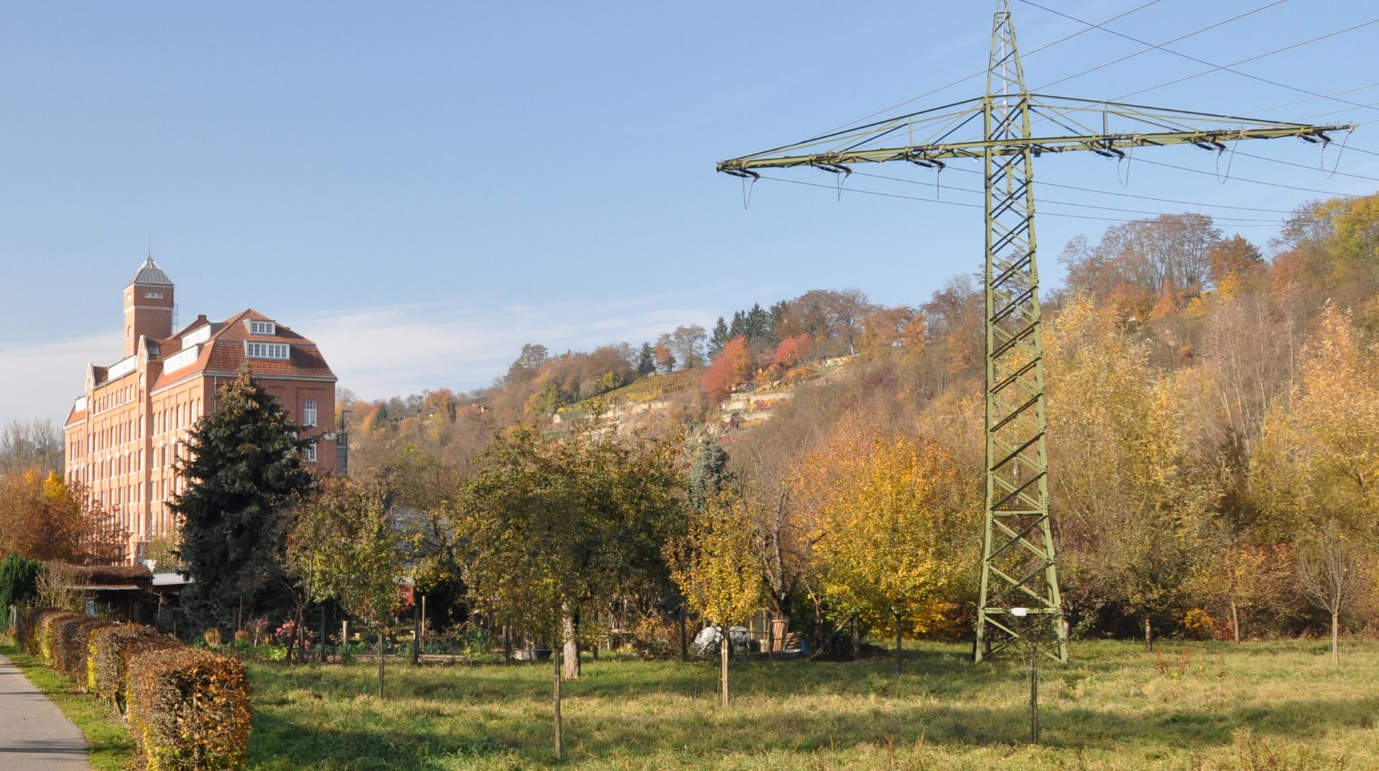 Bietigheim-Bissingen / Am Enztalradweg