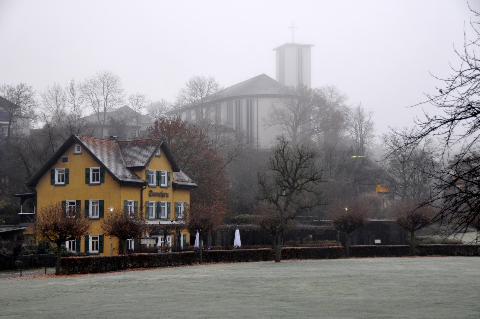 Bietigheim-Bissingen - Nebel am Morgen / Bürgergarten
