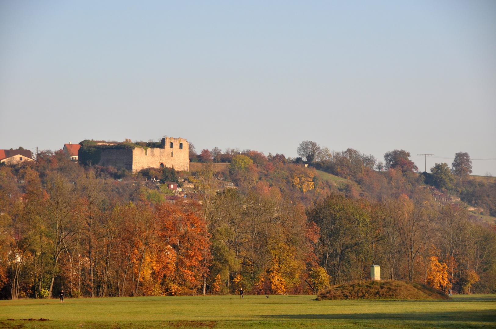 Bietigheim-Bissingen .... Novembertag