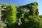 Bietigheim - Bissingen Viel Grün