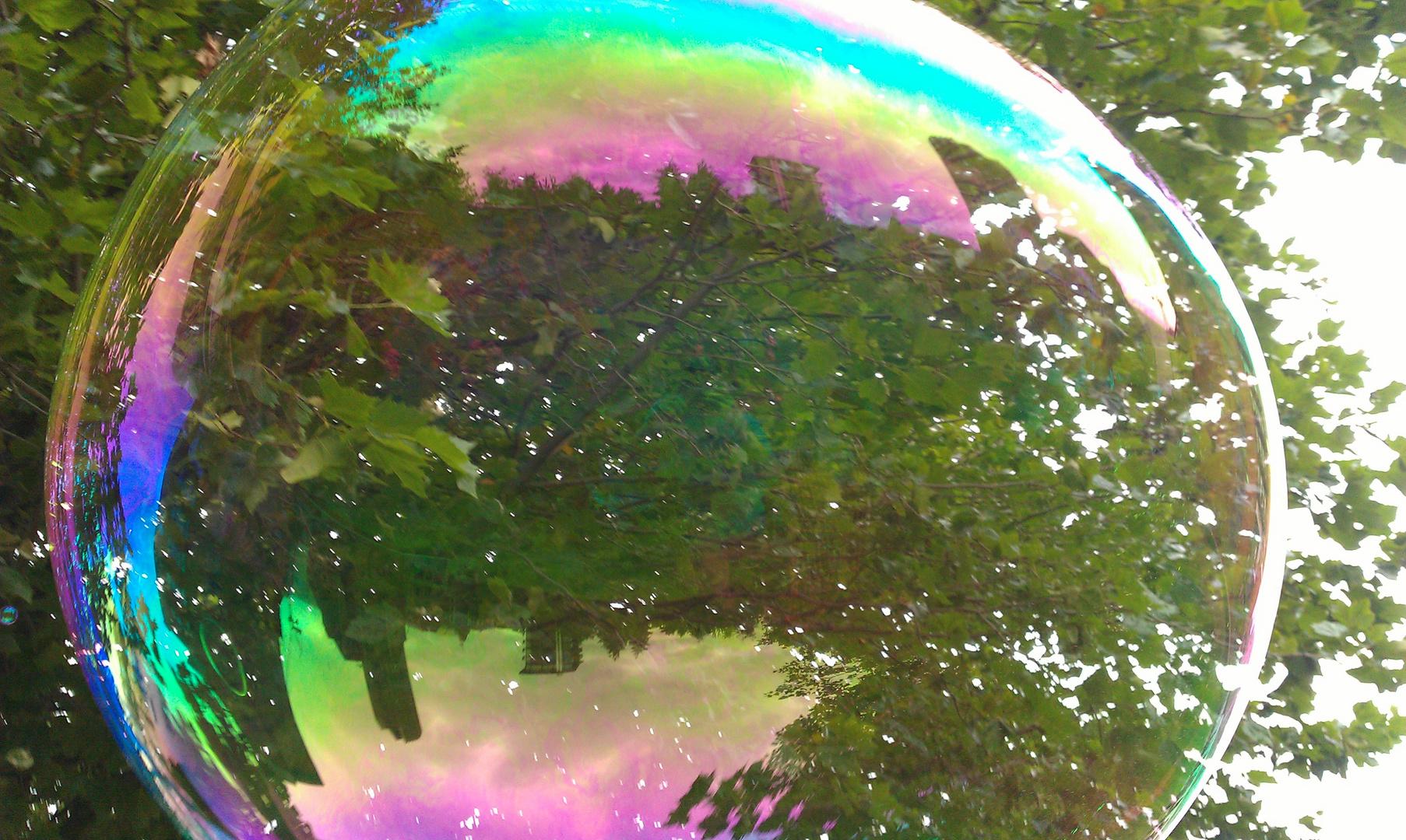 big dream bubble