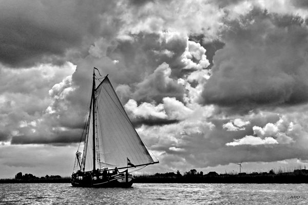 Big Sail, Big Sky