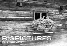 bigpictures