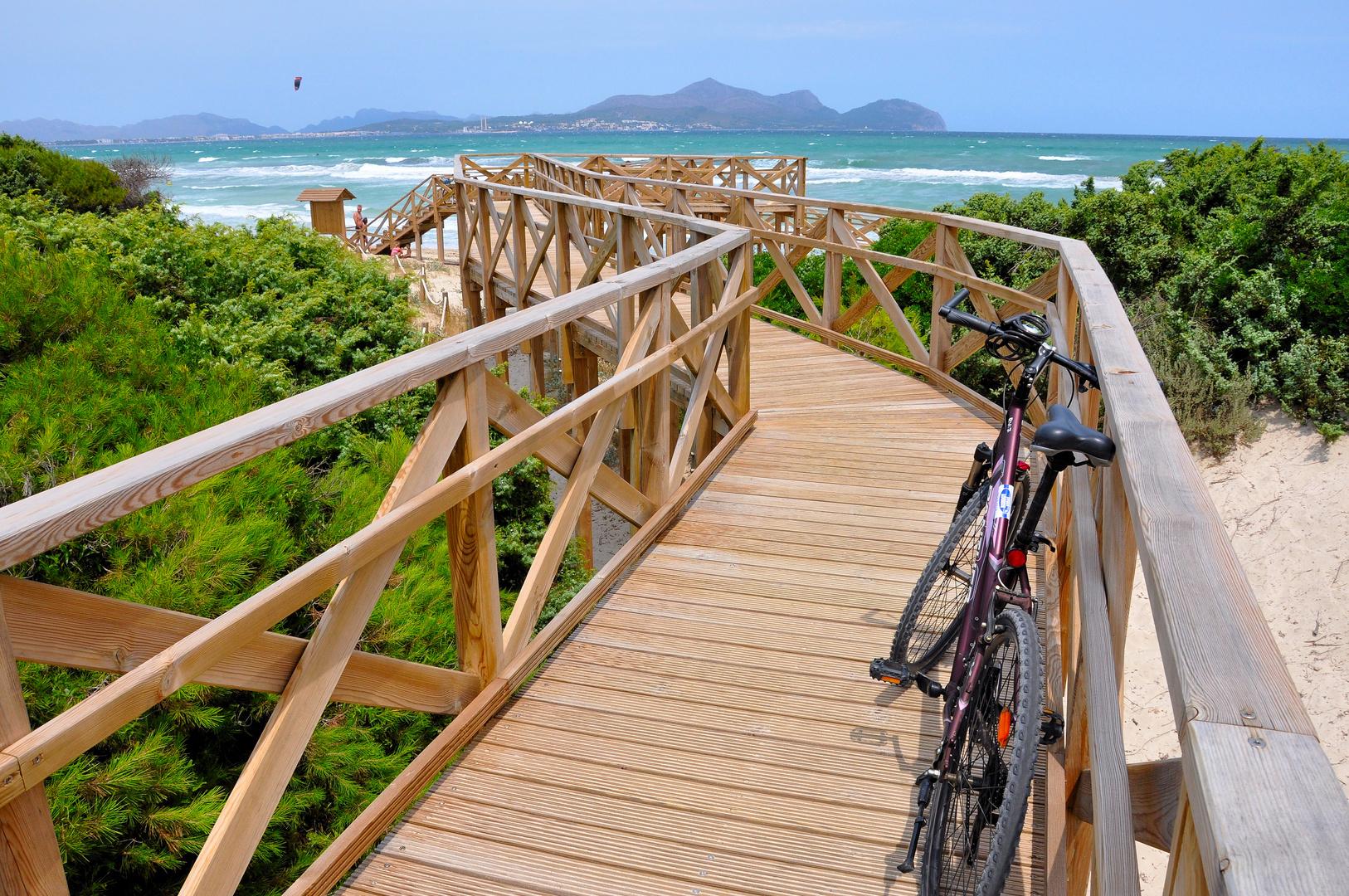 Bike-and-Beach Tour