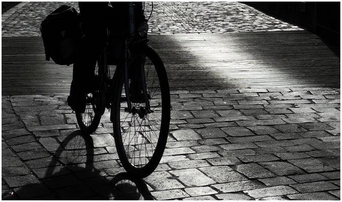 bike, wood and cobblestone