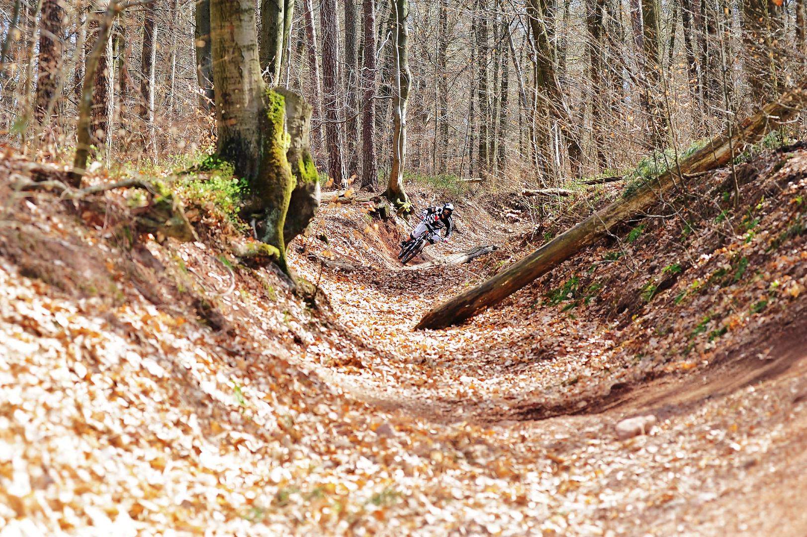 Bikepark Beerfelden 04.04