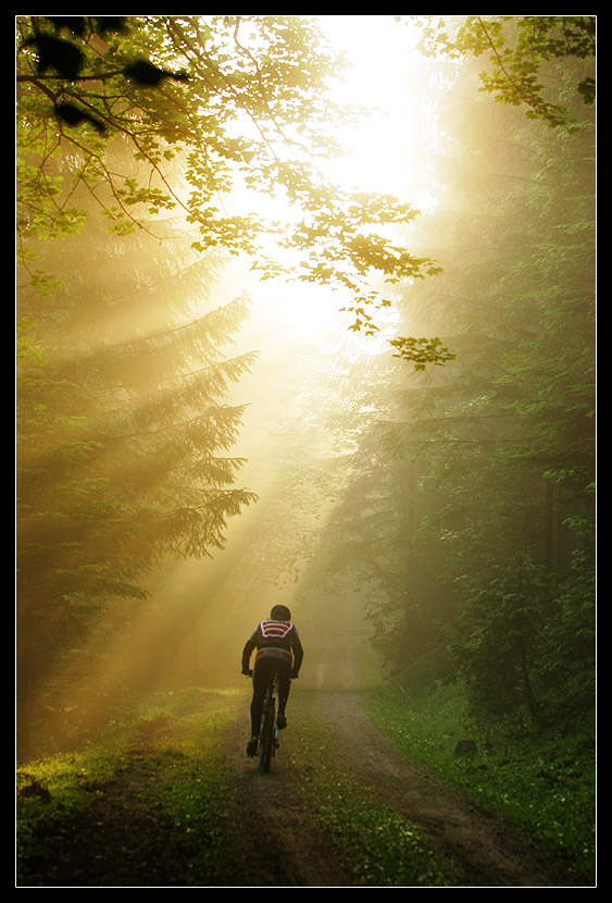 Biker im Morgengrauen