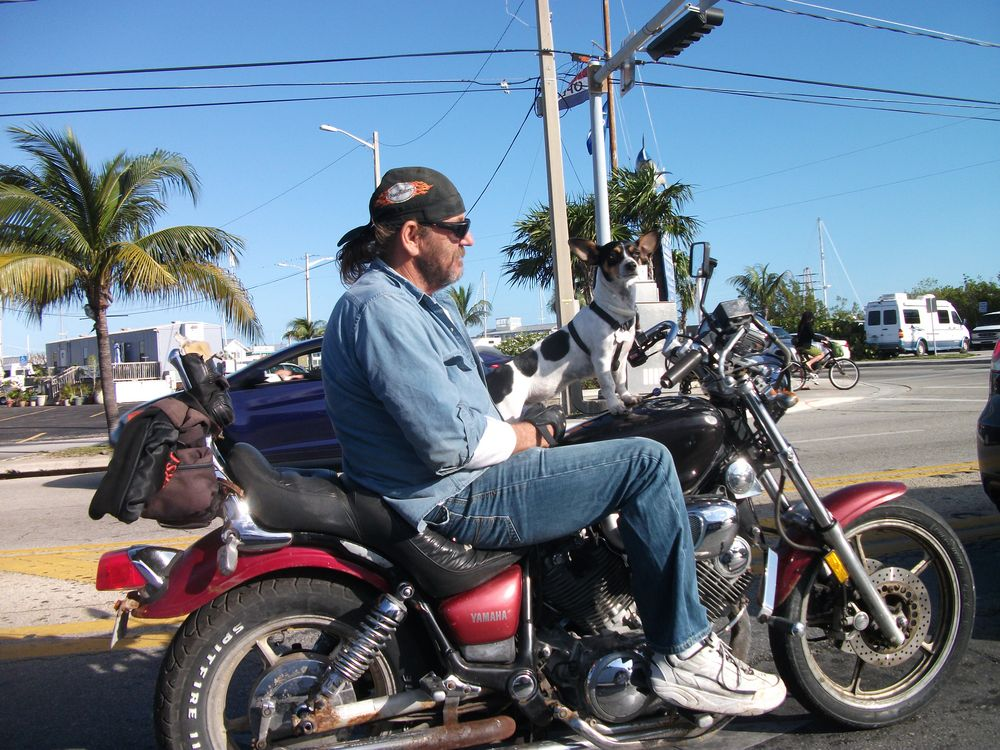Biker in Key West von Hallo Akim