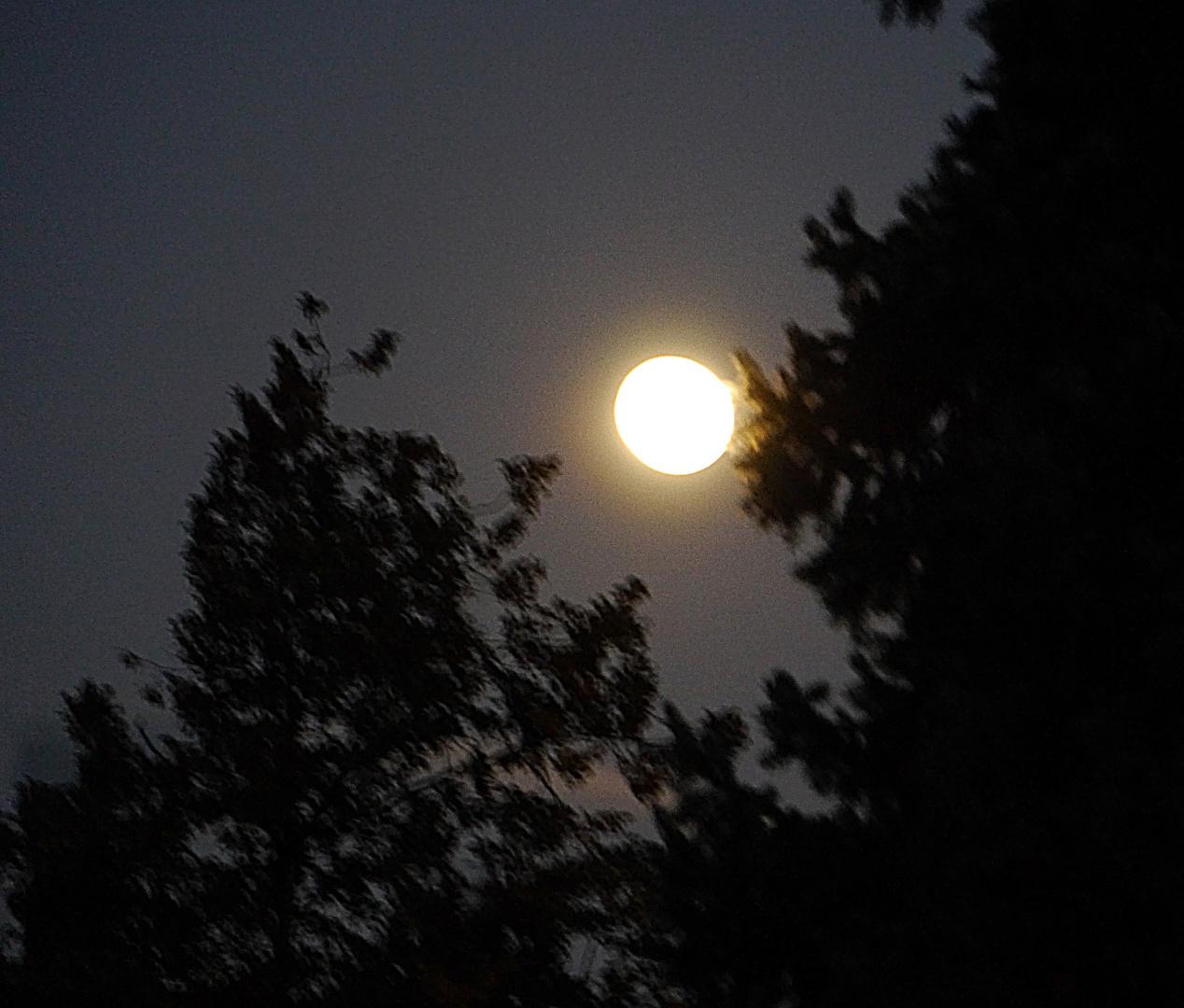 Bild 2: Mond über Ratingen