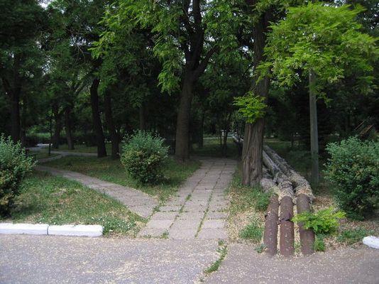 Bild eines Parks
