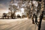 Bild Nr. 1~~~~~~~~~~~~~~~~~Winter am Stausee~~~~~~~~~~~~~~~~~~