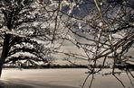 Bild Nr. 3~~~~~~~~~~~~~~~~~Winter am Stausee~~~~~~~~~~~~~~~~~~