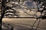 Bild Nr. 5~~~~~~~~~~~~~~~~~Winter am Stausee und Mulde~~~~~~~~~~~~~~~~~~