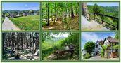 Bilder einer Wanderung by Günter Walther